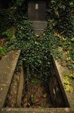 Tombe vide sur le cimetière d'Olsany à Prague image libre de droits