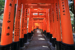 Tombeau de Fushimi Inari Taisha à Kyoto, Photo stock