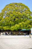 Tombeau de Meiji Jingu Photo stock