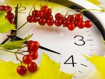 Tombent de retour, l'horaire d'hiver Horloge et viburnum Image libre de droits