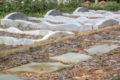 Tombes de marbre sinueuses Images libres de droits