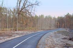 Tombez dans la forêt - stationnez la route dans Bucha, Ukraine Photos libres de droits