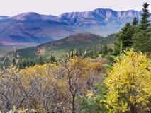 Tombez dans la région sauvage nordique, Yukon T, Canada Photos libres de droits
