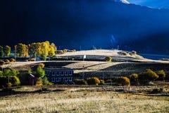 Tombez pour les personnes tibétaines dans Tianyuan Geng Image stock
