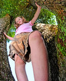 Tomboy Up a Tree Royalty Free Stock Photos
