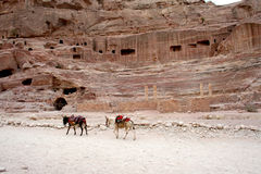 Tombs carved into the red sandstone in Petra,Jordan Royalty Free Stock Photography
