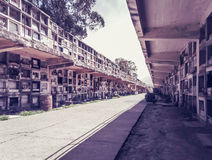 Color photo of tombs along street in cemetery in Santiago Royalty Free Stock Photography