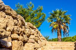 Tombs of the Kings, an ancient necropolis in Paphos Stock Images