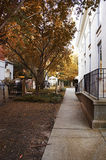 Tombs passage lawn tranquility autumn Royalty Free Stock Photography
