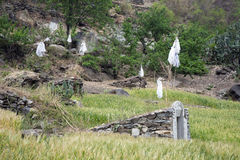 Tombs in a Wheat Field. Tombs in a small field of winter wheat growing in Tiger Leaping Gorge in Yunnan Province, China Royalty Free Stock Photography