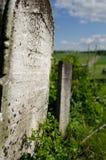 tombstone Стоковые Изображения RF
