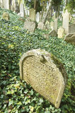 Tombstone. In a Jewish cemetery Royalty Free Stock Image