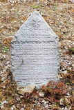 Tombstone on the old village Jewish Cemetery Stock Photography