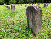 Tombstone on the right. A whole row of graves Royalty Free Stock Images