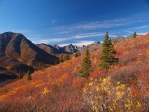 Tombstone territorial park. During late autumn sunny day, Yukon, Canada Stock Photography