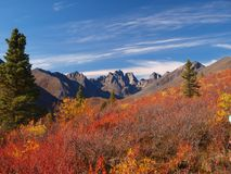 Tombstone territorial park. During late autumn sunny day, Yukon, Canada Stock Images