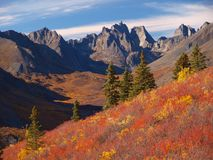 Tombstone territorial park. During late autumn sunny day, Yukon, Canada Royalty Free Stock Images