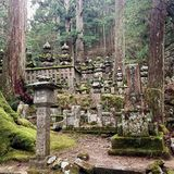 Tombstones in an ancient japanese graveyard Royalty Free Stock Photography