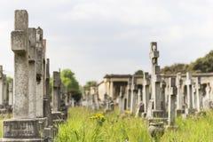 Tombstones in Brompton Cemetery. West Brompton, London, England, United Kingdom Royalty Free Stock Image
