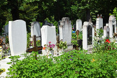 Tombstones in the cemetery Stock Photography
