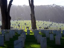 Historic Union Cemetary, San Francisco stock photos
