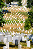 Tombstones on a grassy hill at Arlington National Cemetery. Near Washington D.C Royalty Free Stock Image