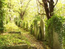 Tombstones in Highgate Cemetery Royalty Free Stock Image