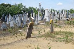 Tombstones in the jewish cemetery. B stock images