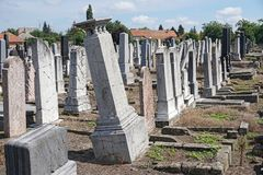 Tombstones in the jewish cemetery. In summe royalty free stock images