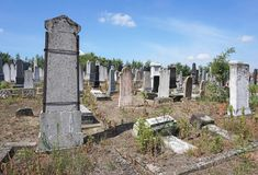Tombstones in the jewish cemetery. In summer royalty free stock photo