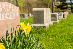 Tombstones in Montreal Cemetery Stock Photos