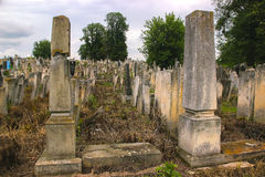 Tombstones in the Old Jewish Cemetery Royalty Free Stock Photography