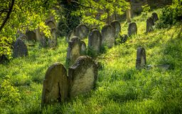 Tombstones in the Jewish Cemetery. Tombstones in the Old Jewish Cemetery in Skalica, Slovakia. Founded in the first half of the 17th century Royalty Free Stock Image
