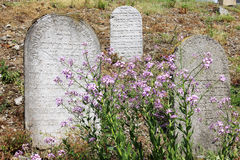 Tombstones on the old village Jewish Cemetery Stock Photos