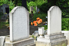 Tombstones. In the public cemetery Royalty Free Stock Images