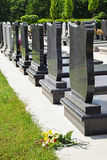 Tombstones. In the public cemetery Royalty Free Stock Image