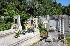 Tombstones in the public cemetery. In a row Stock Photo