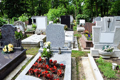 Tombstones in the public cemetery Stock Images