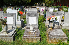 Tombstones in the public cemetery Royalty Free Stock Photo