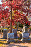 Tombstones and red oak on Oakland Cemetery, Atlanta, USA. Group of tombstones under the crown of the red oak on the Oakland Cemetery in sunny autumn day, Atlanta Stock Photos