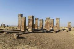 Tombstones of seljuks in Ahlat turkey Royalty Free Stock Photos