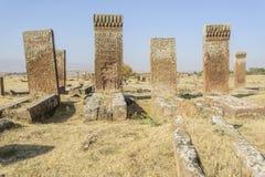 Tombstones of seljuks in Ahlat turkey Stock Photography