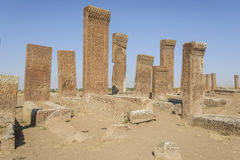 Tombstones of seljuks in Ahlat turkey Royalty Free Stock Photography