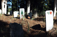 Tombstones. On a soil land surrounded by trees Stock Image