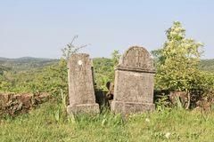 Tombstones in the wilderness of Istria. Old gravestones in the abandoned graveyard of a deserted and dilapidated village in Istria stock images