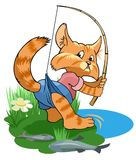 Tomcate. Cute tabby cat catches fish in a pond Royalty Free Stock Photo