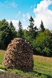 Tome das árvores e da floresta Fotos de Stock