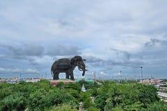 Tome o céu da foto, elefante na condução imagem de stock