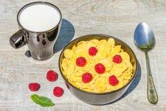 Tome o café da manhã no jardim com flocos e framboesas de milho Foto de Stock