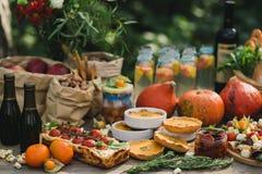 Tome parte num piquenique na natureza com uma torta com tomates de cereja, tartes de abóbora, vinho, tomates sol-secados, limonad imagem de stock royalty free